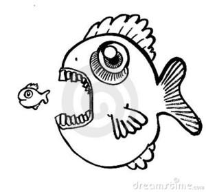 grote-vissen-die-weinig-vis-eten-20522145